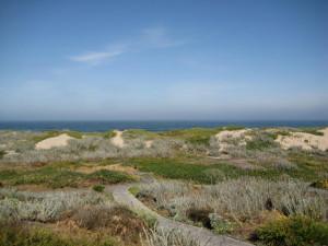 monterey-dunes-5.31.10